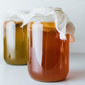 Kombucha brewing jars with scoby